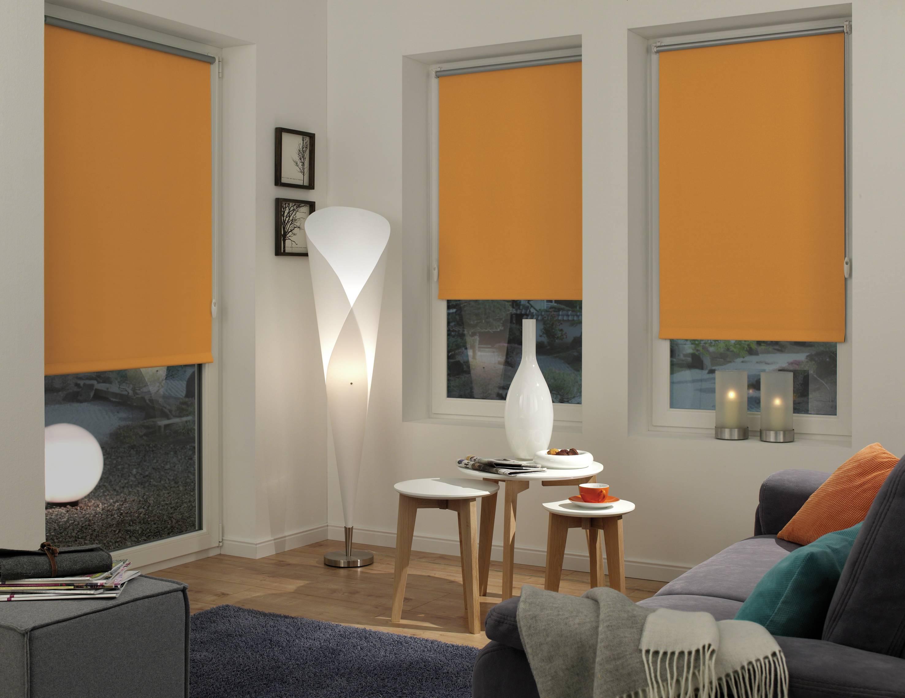 easyfix rollo thermo orange 100 x 150 cm 12555. Black Bedroom Furniture Sets. Home Design Ideas